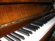 Продам профессиональное фортепианоPETROFв г.Хмельницкий