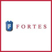 Запчасти для сельхозтехники и спецтехники от Фортес